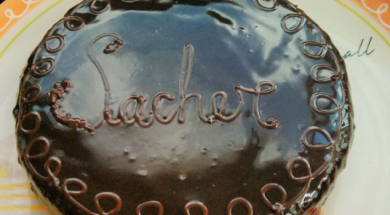 Paste Sacher